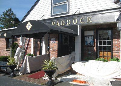 thePaddock-1